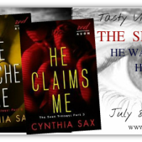 Virtual Book Tour: The Seen Trilogy by Cynthia Sax {Guest Post + Giveaway}