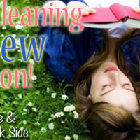 Spring Cleaning Review-A-Thon {Wrap Up}