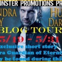 Blog Tour | Hunt the Darkness by Alexandra Ivy {Book Spotlight, Excerpt & Giveaway}