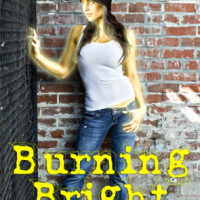 Release Day Blitz & Giveaway: Burning Bright by E.J. Stevens