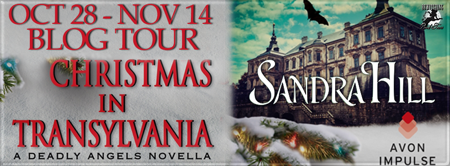 Book Spotlight: Christmas in Transylvania by Sandra Hill