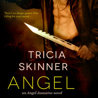 Cover Reveal: ANGEL LOVER by Tricia Skinner