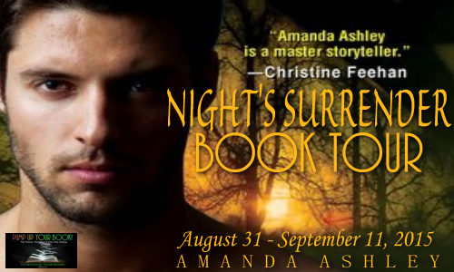 Night's Surrender Book Banner