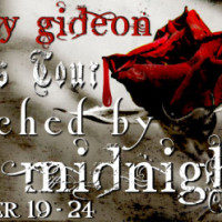 Blog Tour: Touched by Midnight by Nancy Gideon {Excerpt + Giveaway}