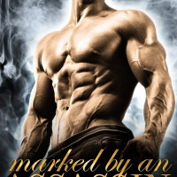 Cover Reveal: MARKED BY AN ASSASSIN by Felicity Heaton